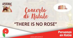 Concerto di Natale per il Perù - venerdì 20 dicembre. Ingresso gratuito - Peruanos en Italia